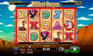 Wild Cat Canyon Netgen Gaming