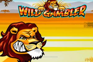 Wild Gambler Online Slot Ash Gaming